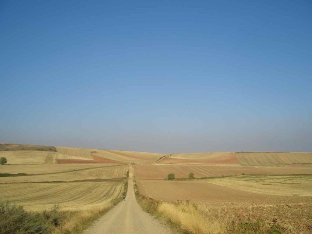 Jakobsweg, Der Weg durch weite Kornfelder