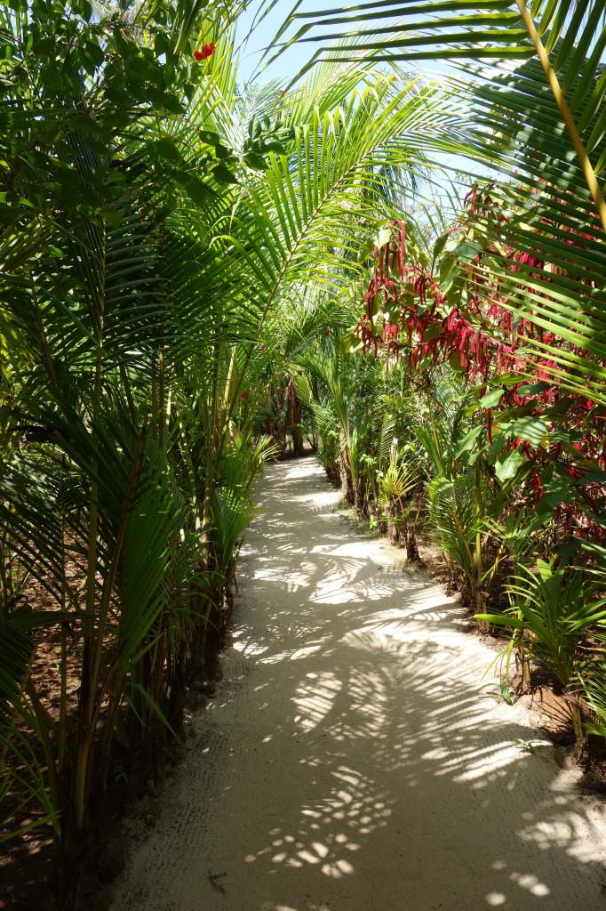 Zentralamerika, Nicaragua, Little Corn Island