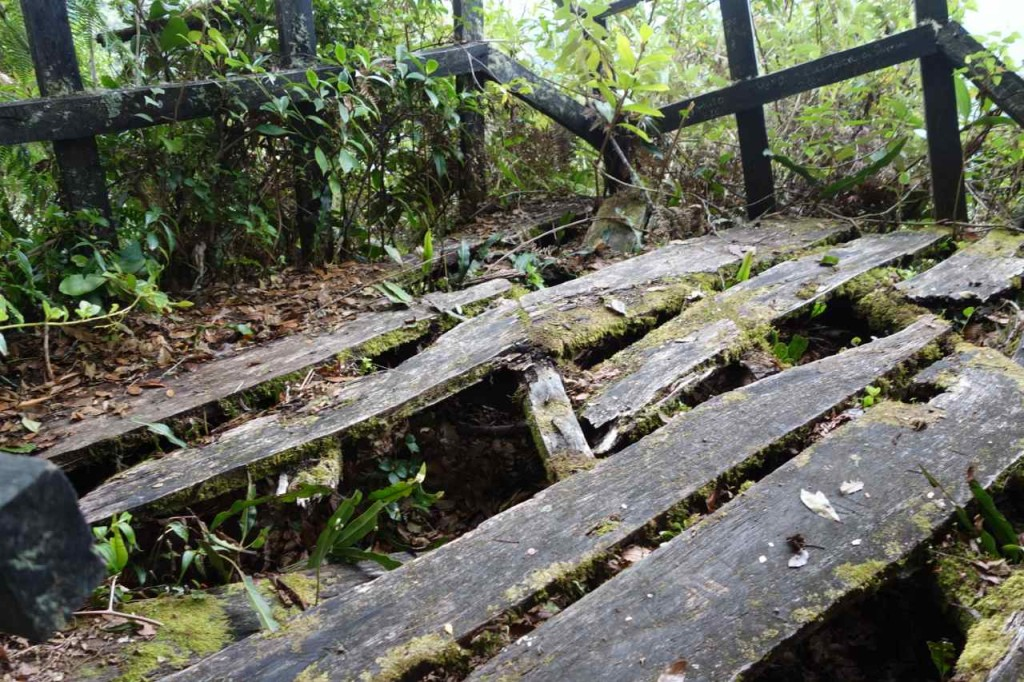 Zentralamerika, Panama, Sendero Quetzal, Platform des Mirador
