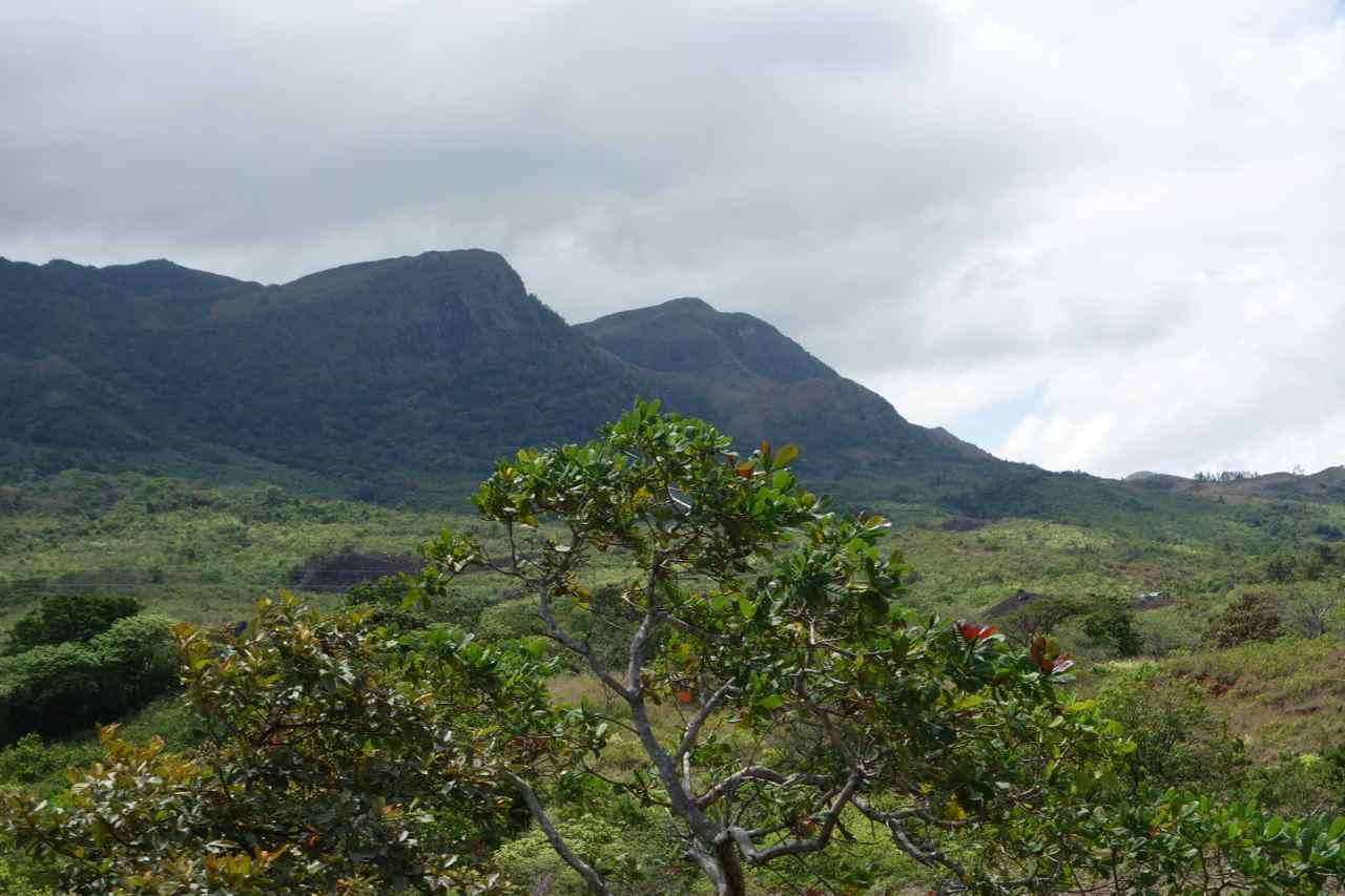 Panama, Landschaft zwischen Santa Fé und Santiago