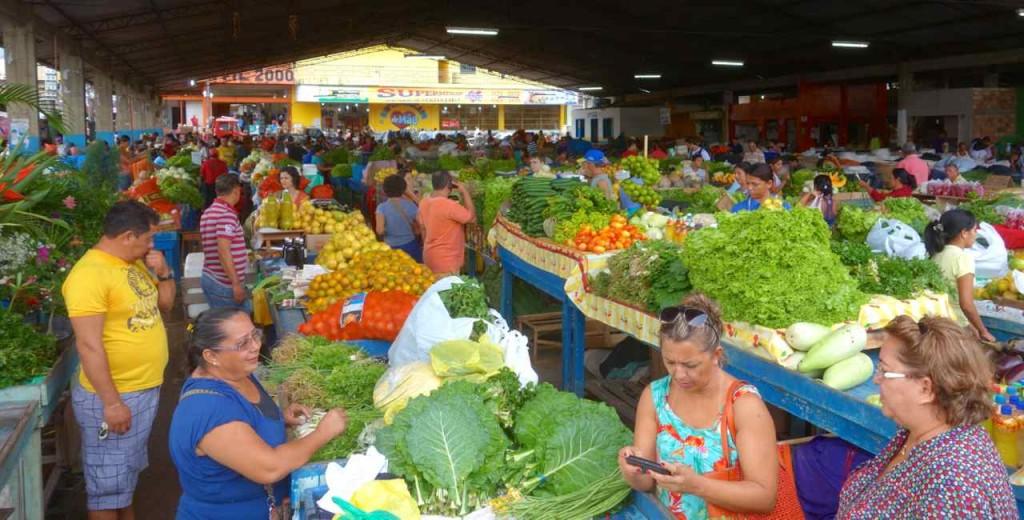 Frauen beim einkaufen. Markthalle in Santarem