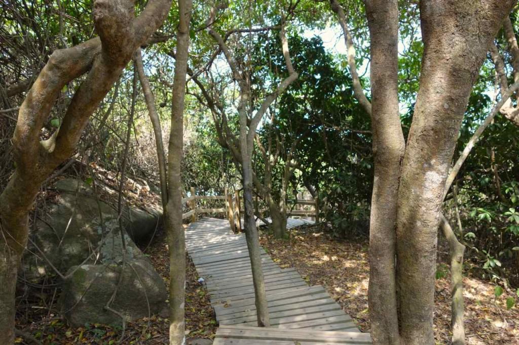 Parque Tayrona, Plamkenweg