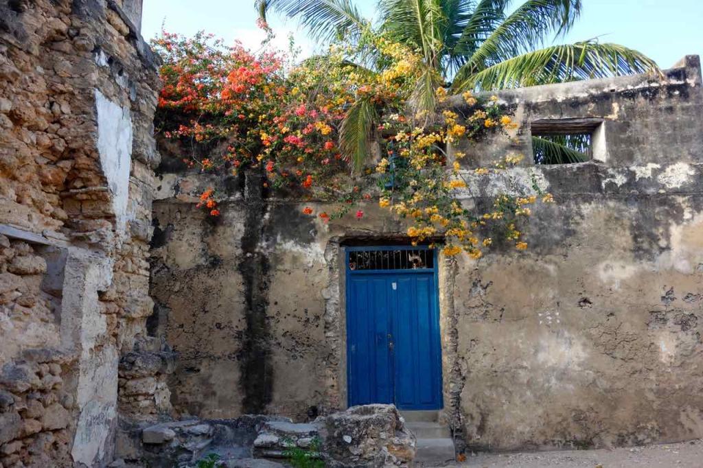 Mosambik, Ilha de Mosambik, marodes Haus mit blühendem Baum