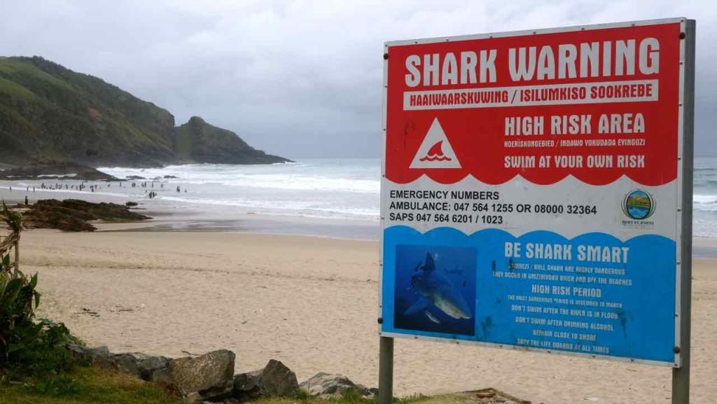 Südafrika, Shark Warning mit Strand