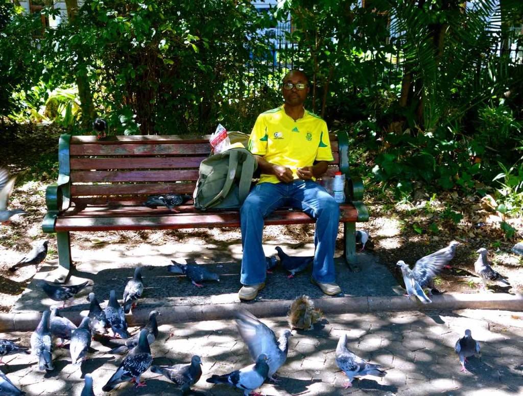Kapstadt, Companys Garden, Taubenfütterung