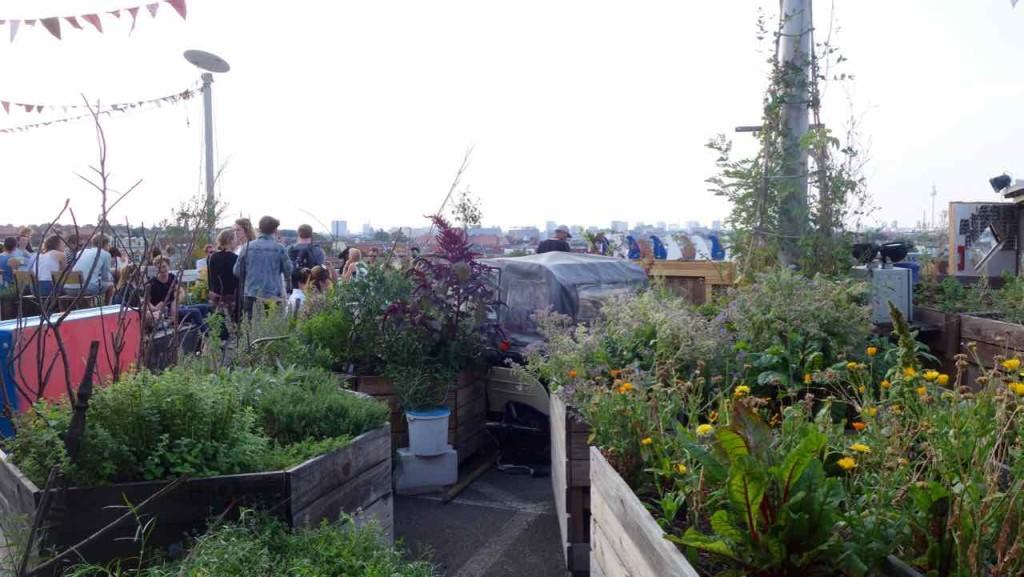 Rooftop-Bar Klunkerkranich, Kräuter- und Blumengarten
