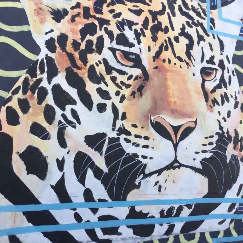 Buenos Aires Street Art, Artist: Maze Warrior, iPod-Foto