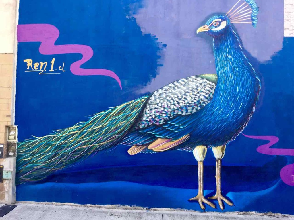 Buenos Aires Street Art, Artist: Ren (Chile), iPod-Foto