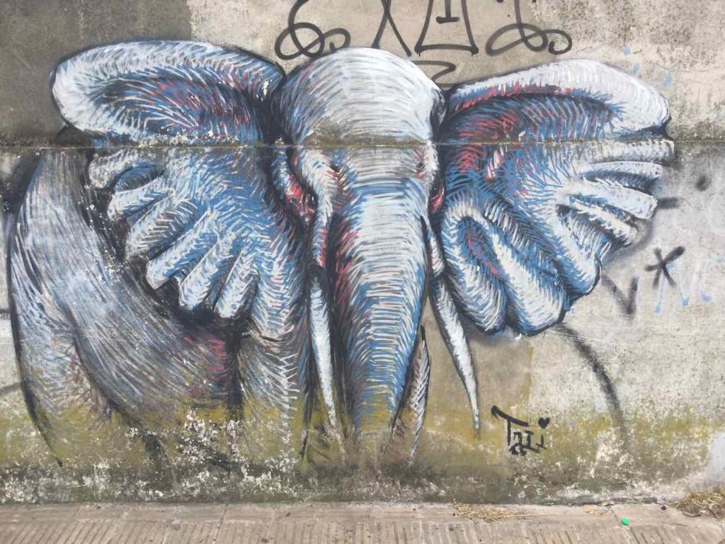 Buenos Aires Street Art in Barracas, Elefant