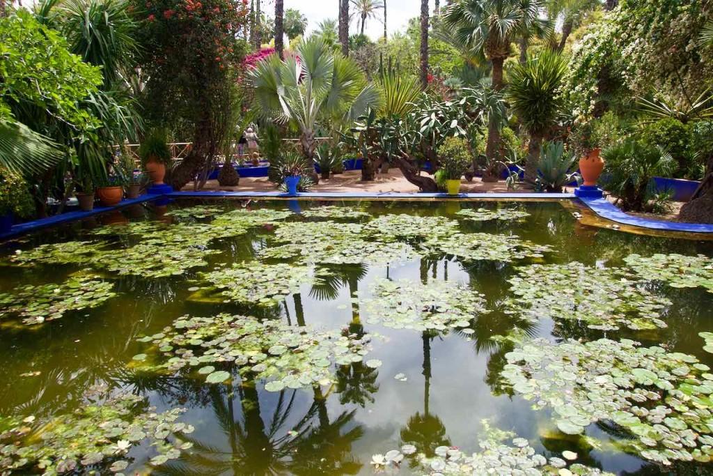 Jardin Majorelle Marrakesch, Teich ohne Gitter