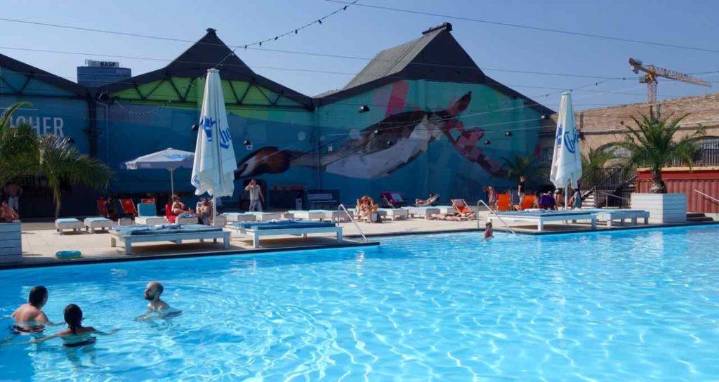 RAW-Gelände, Haubentaucher, Schwimmbad mit Haubentaucher