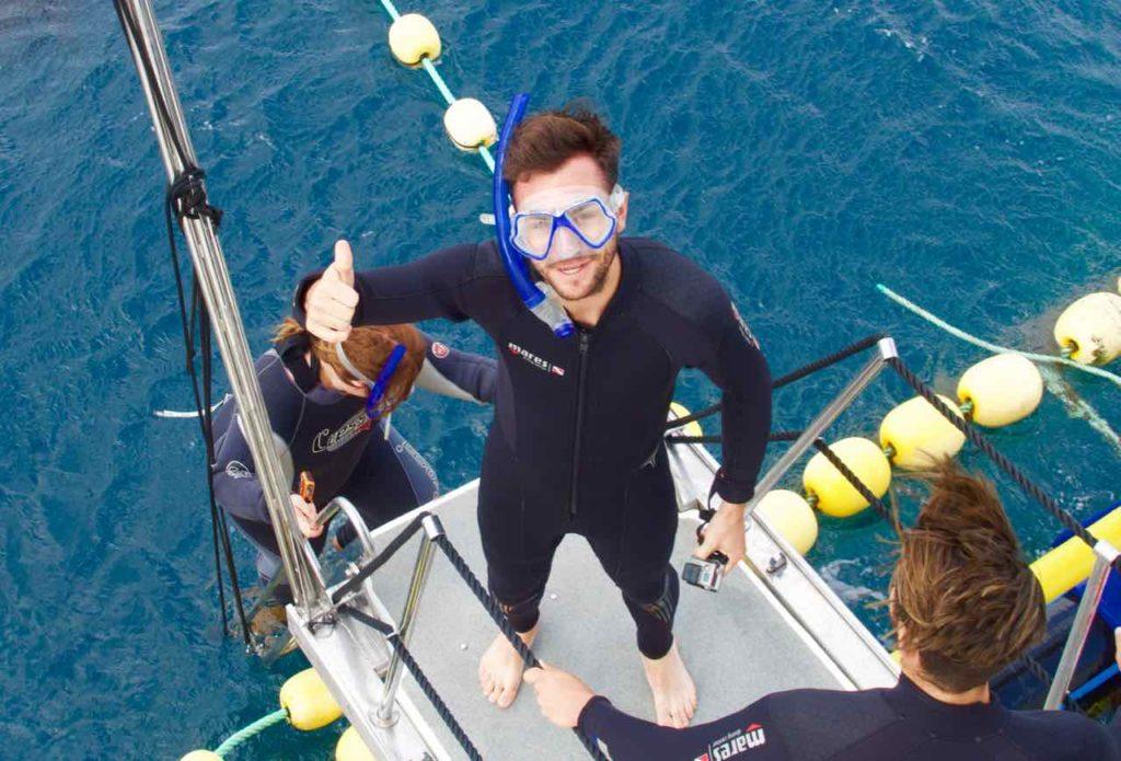 Schwimmen mit Thunfischen, L'Ametlla de Mar, Katalonien, Schnorchler auf dem Weg ins Wasser