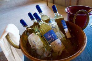 Douro-Tal, Casa Calços do Tanha, Wein im Kübel, © PetersTravel