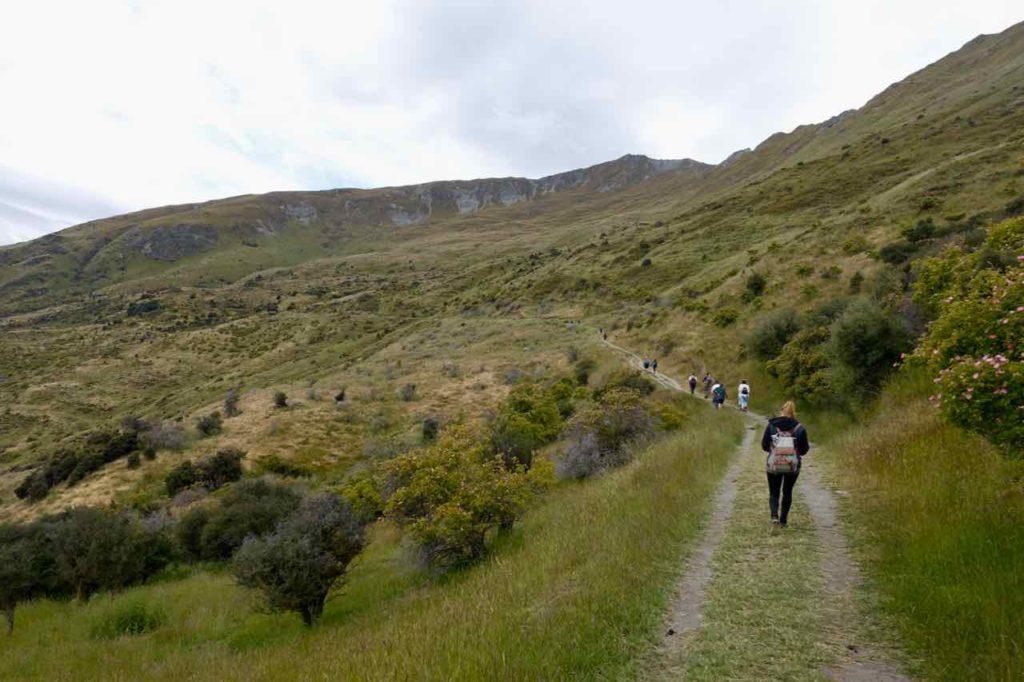 Mount Roy in Wanaka, Der Anfang, Neuseeland ©www.PetersTravel.de