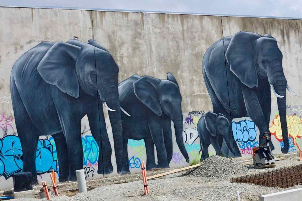 Christchurch Sehenswürdigkeiten Tipps: Streetart Neuseeland @PetersTravel