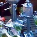 Absinth Bar Dans Les Arbres, Baumbar in der Provence