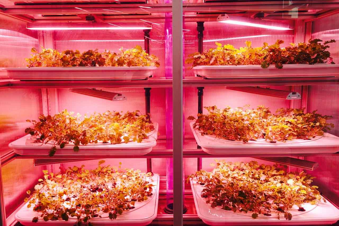 Restaurant Good Bank Sieht So Unsere Zukunft Aus Peterstravel