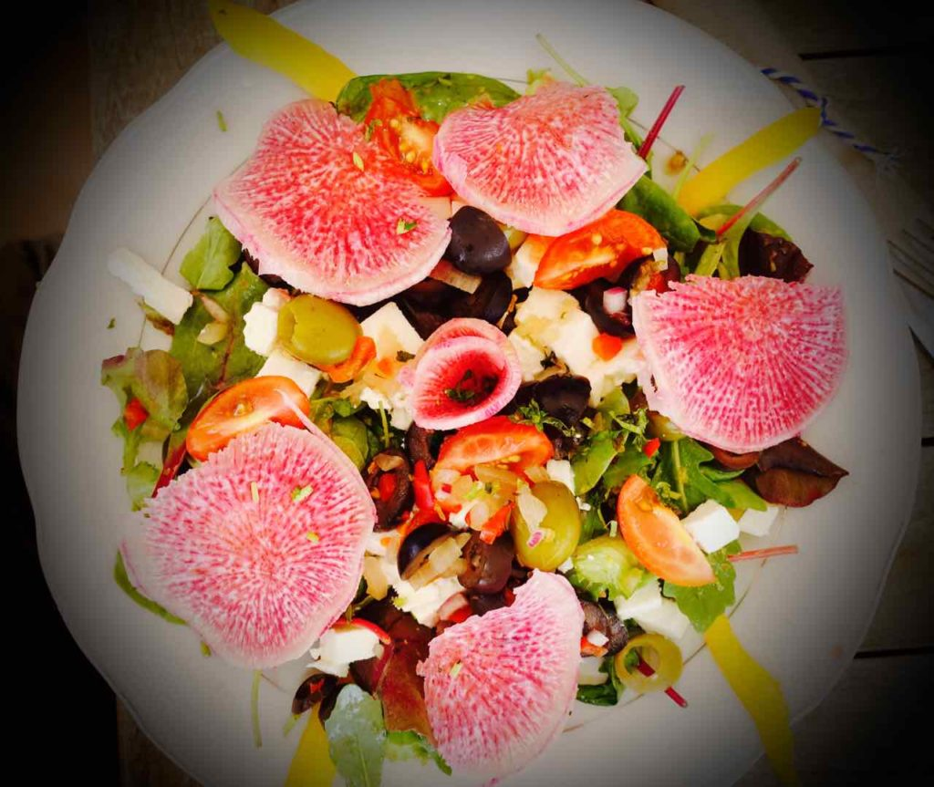 Restaurants Willemstad: Haussalat im Hofi Cas Cora Curacao Copyright Peter Pohle