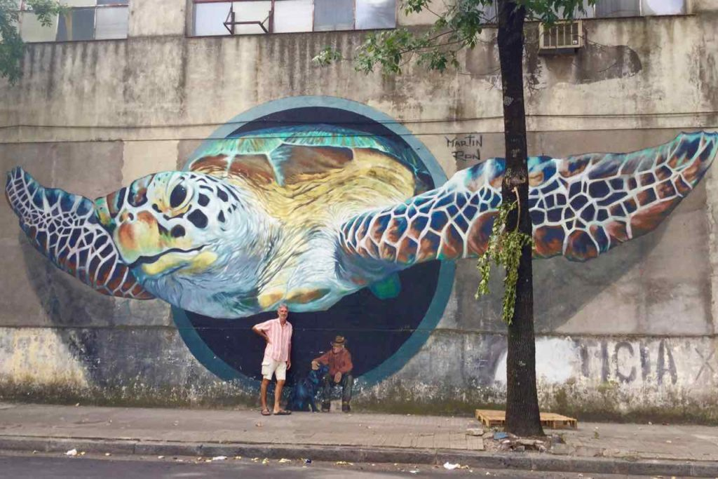Street Art in Buenos Aires, 3-D-Turtle, Artist: Martin Ron, Copyright Peter Pohle PetersTravel