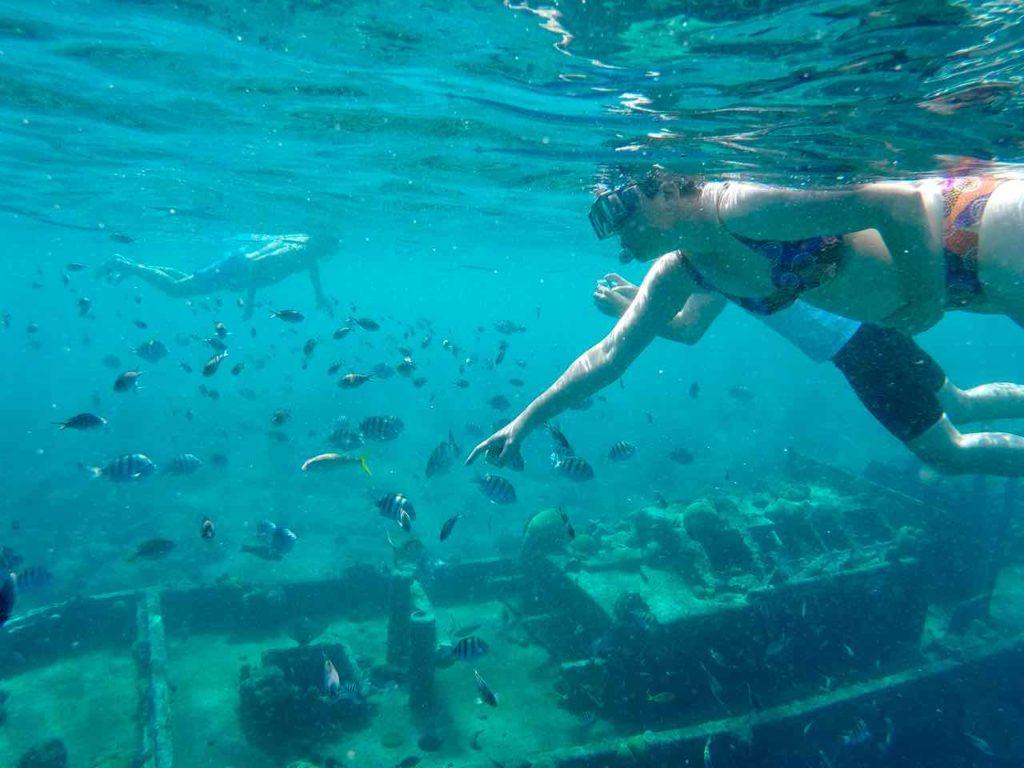 Tauchen und schnorcheln am Tugboat in Curacao Copyright Myronchitrip
