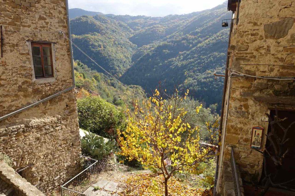 Sehenswürdigkeiten in Ligurien Apricale, Ausblick mit Baum