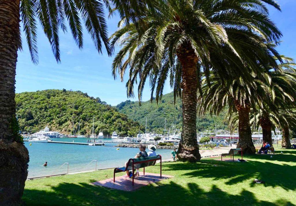 Picton Neuseeland Hafenpromenade mit Palmen Copyright Peter Pohle PetersTravel