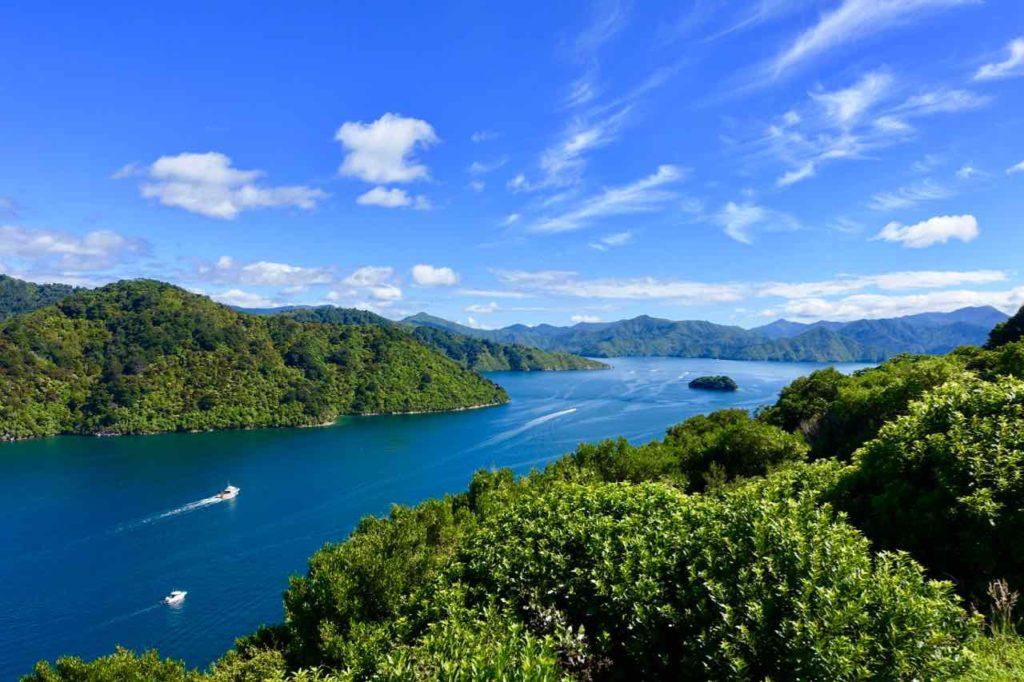 Picton Neuseeland: Blick auf den Queen Charlotte Sound bei strahlendem Sonnenschein