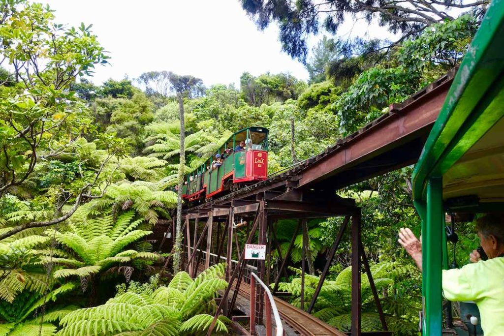 Coromandel Halbinsel, Whitianga, Driving Creek Railway and Potteries, Copyright Peter Pohle PetersTravel