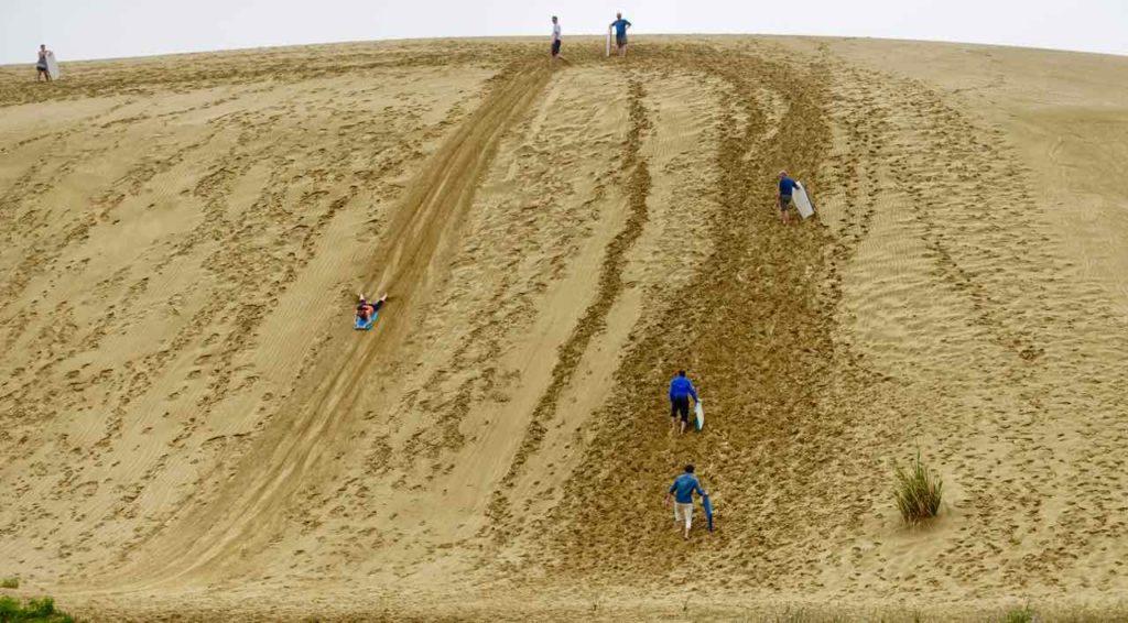 Paihia Tipps, Sandboarding, Neuseeland Copyright Peter Pohle PetersTravel