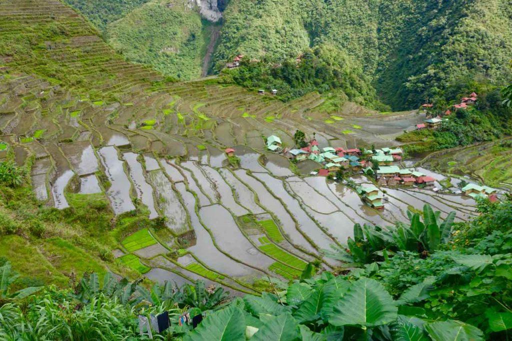 Philippinen: Batad Ort mit Terrassen Copyright Peter Pohle