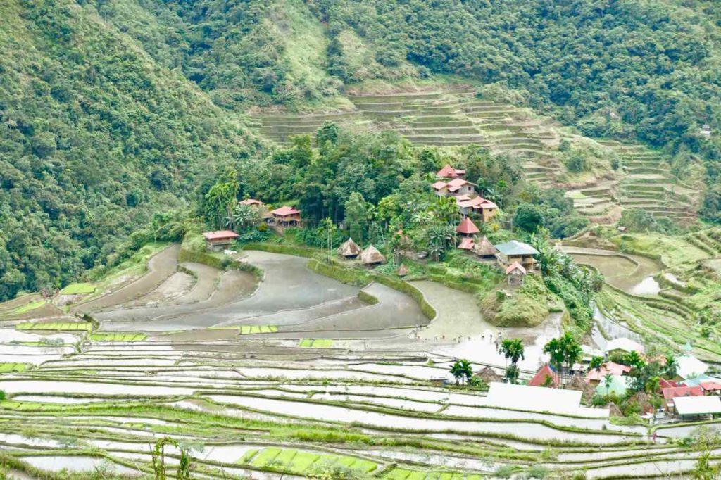 Batad mit Reisbauern bei der Arbeit Copyright Peter Pohle