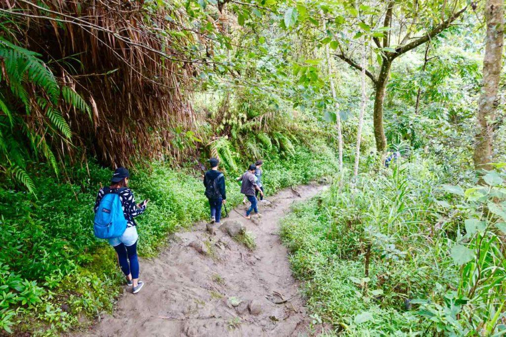 Weg zu den Reisterrassen von Batad Copyright Peter Pohle