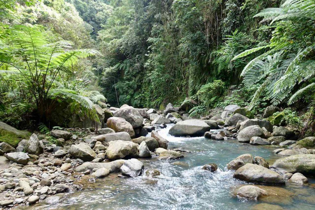 Dumaguete: Da muss man durch, wenn man zum Casaroro Wasserfall will!