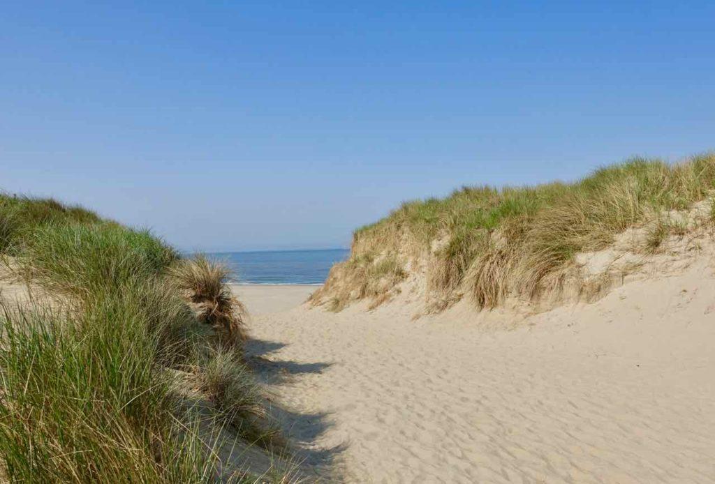 Urlaub auf Texel: Zugang durch die Dünen zum Strand Paal 9