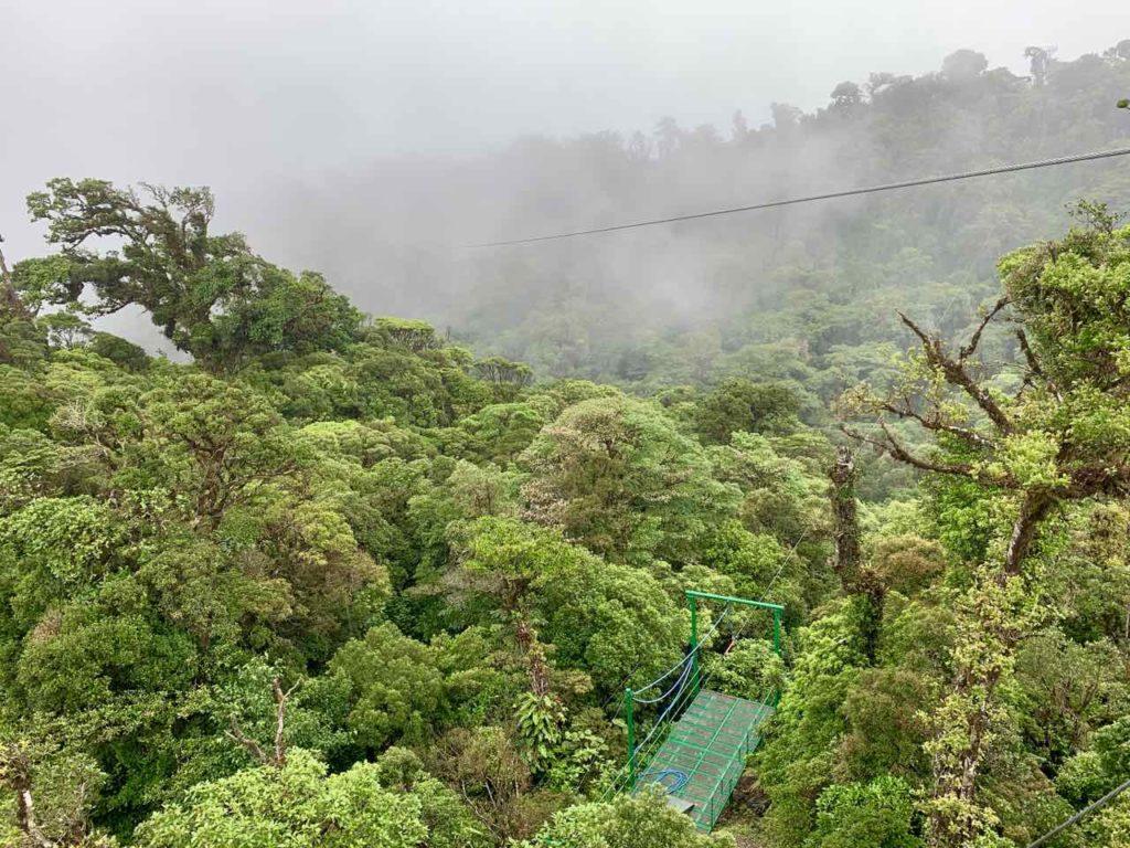 Canopy im Regenwald von Monteverde