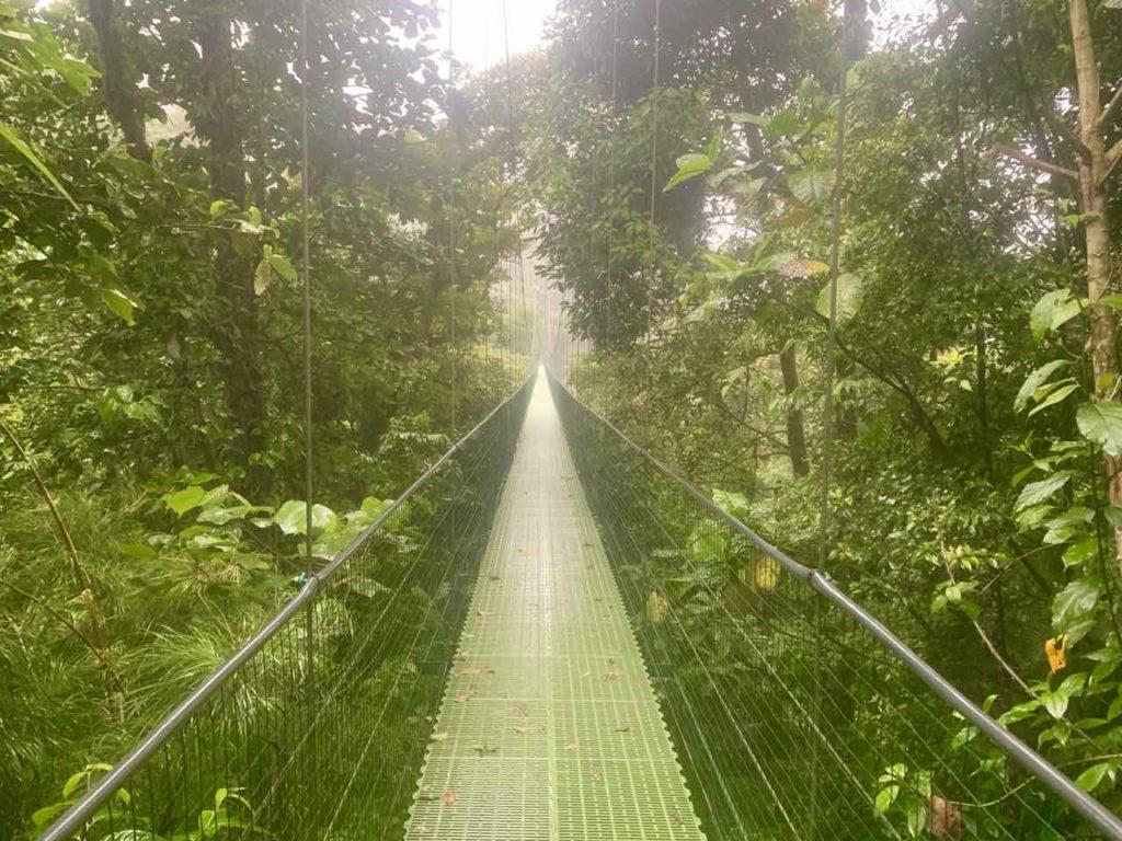 Hängebrücke im Regenwald von Monteverde