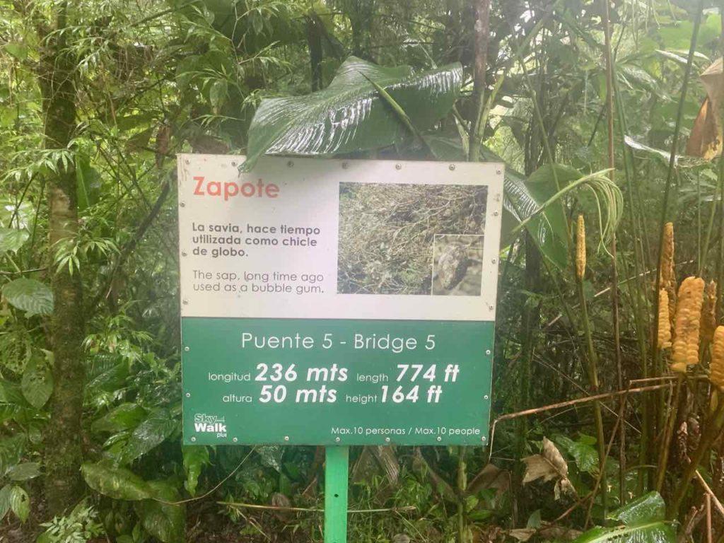 Schild zur Hängebrücke Nr. 5 im Regenwald von Monteverde