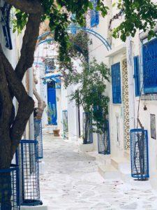 Medina von Hammamet