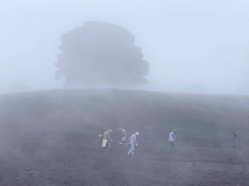 Feldarbeiter bei Cartago, Costa Rica