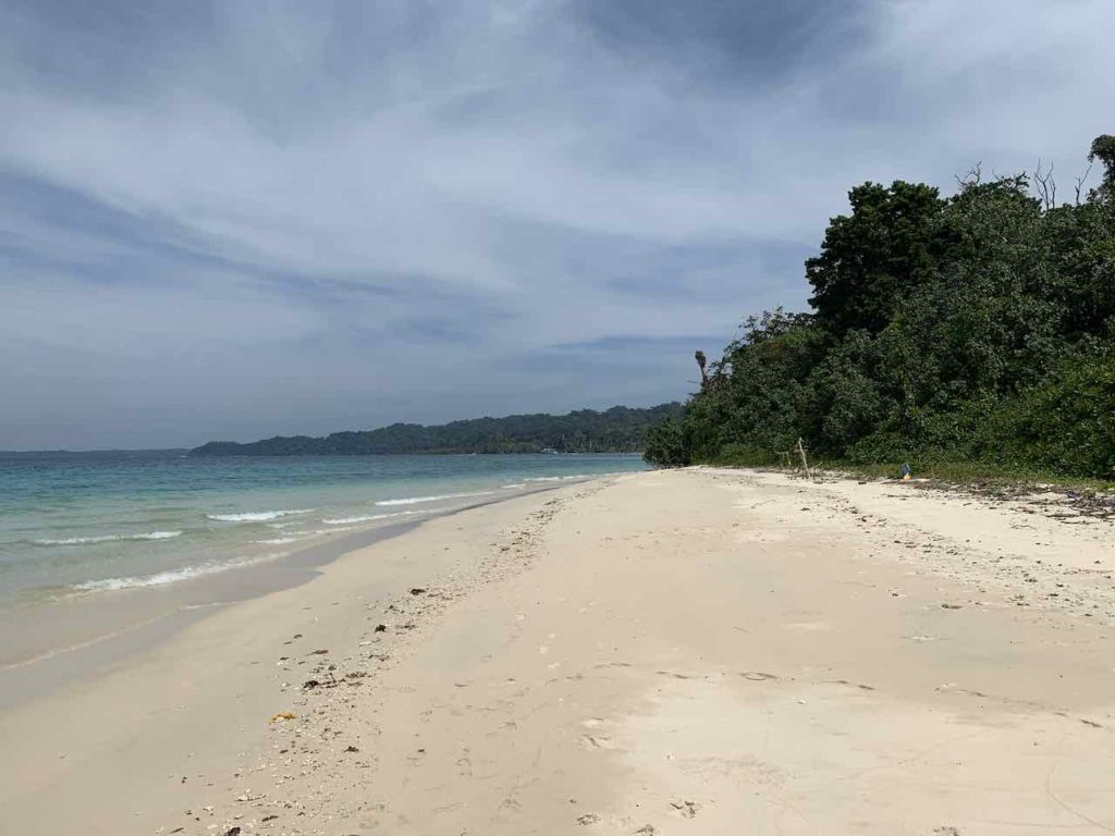 Andamanen: nahe Elephant Beach auf Havelock Island