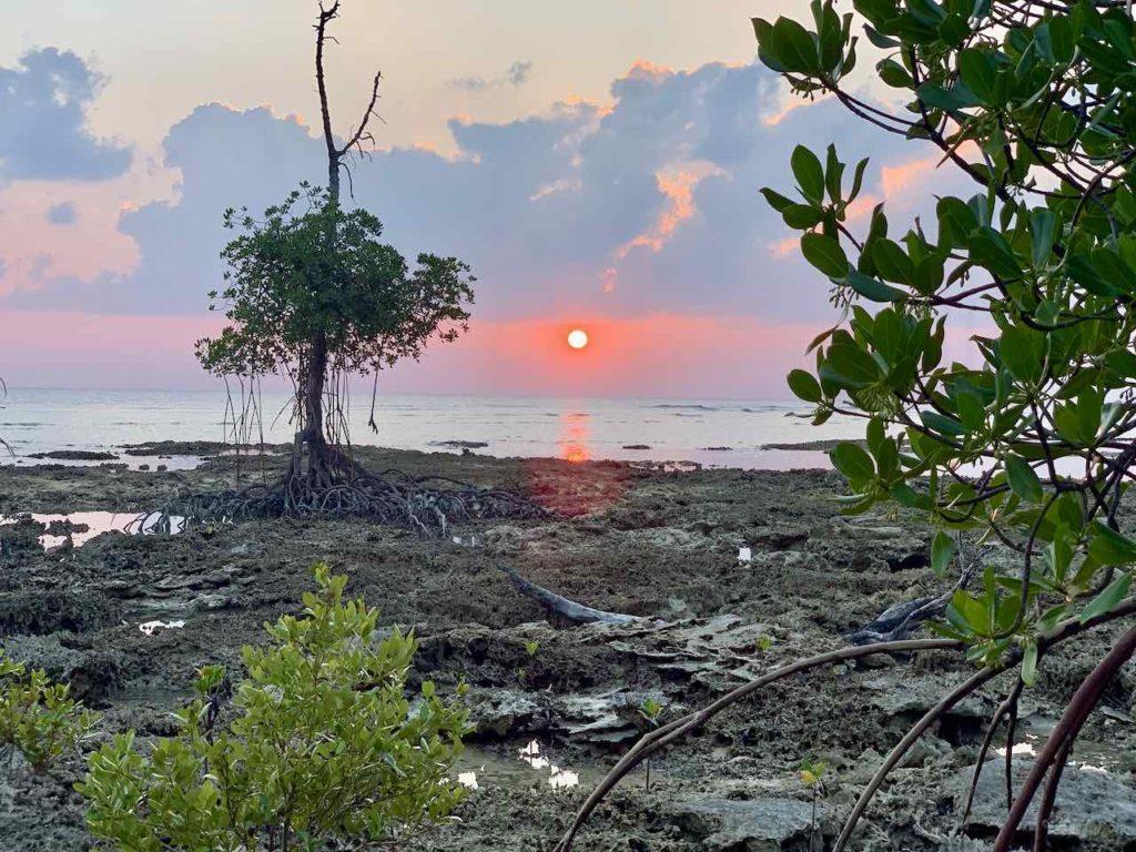 Andamanen: Sonnenuntergang auf Neill Island