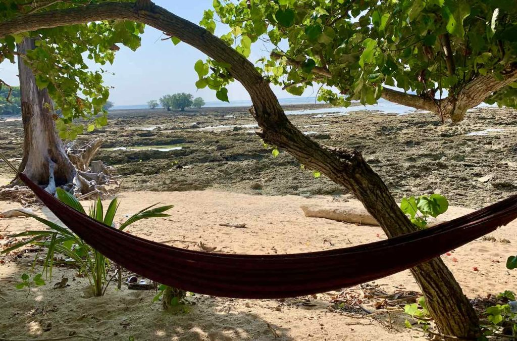Neill Island: Strand beim Break Water bei Ebbe