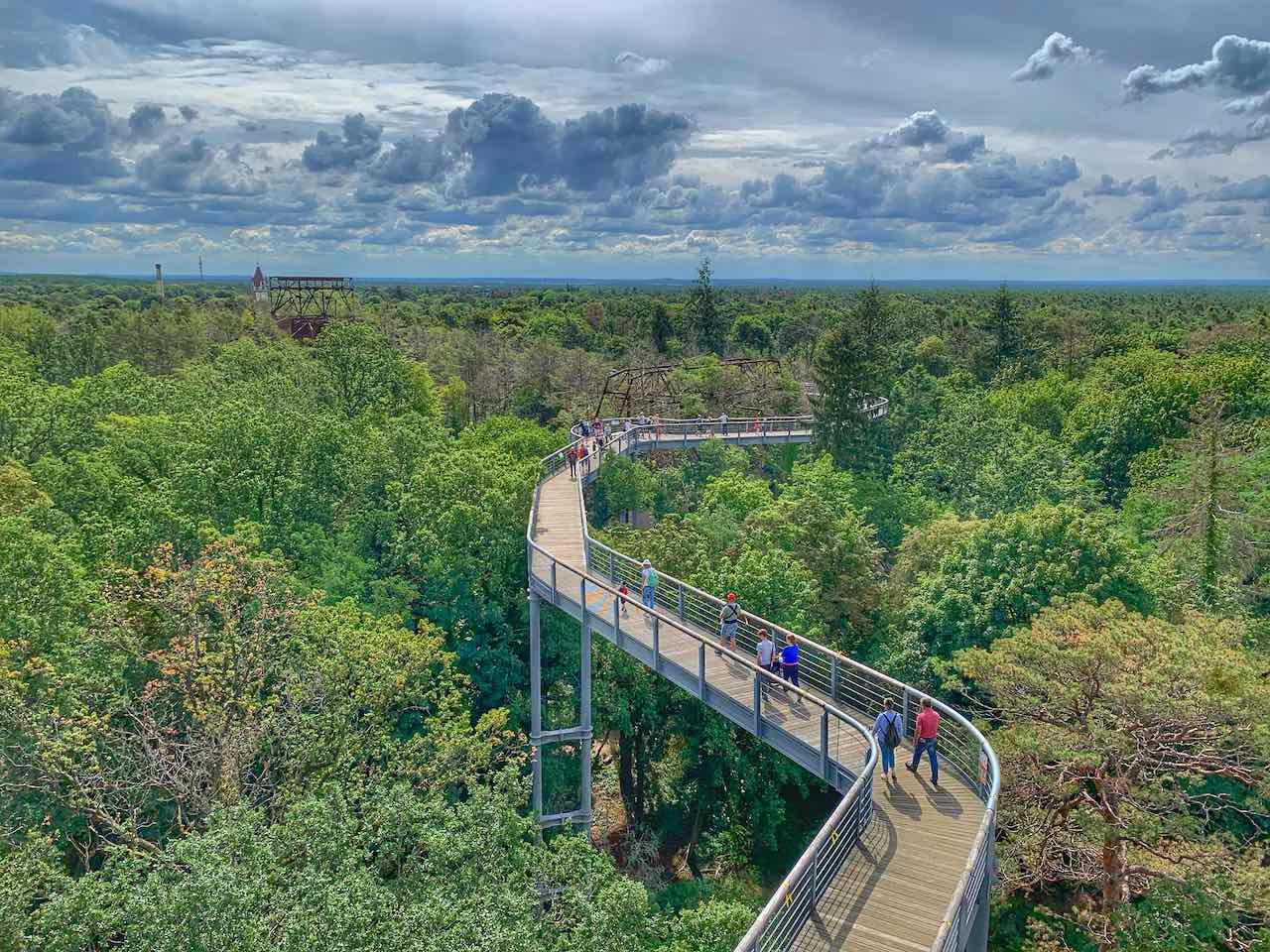 Blick vom Aussichtsturm auf den Baumkronenpfad Beelitz Heilstätten