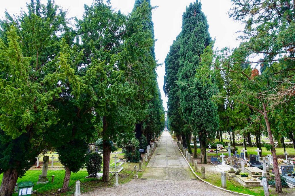 Zypressenallee auf der Friedhofsinsel San Michele