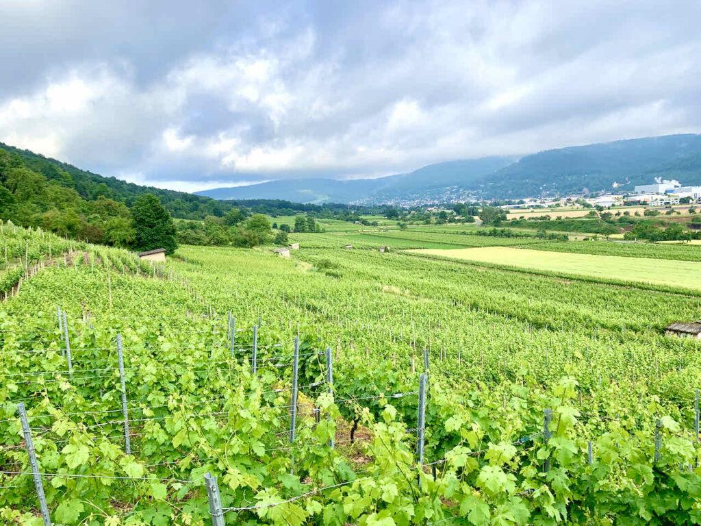 Churfranken: Unterwegs zum Kloster Engelberg